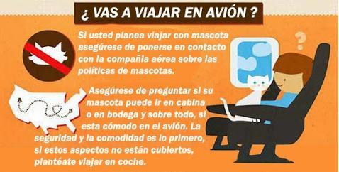 Viaje en avión. copia 2 - Consejos para Viajar con tu perro