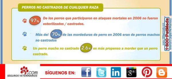 infografía castracion comunidad, Seguros Veterinarios, seguros para perros
