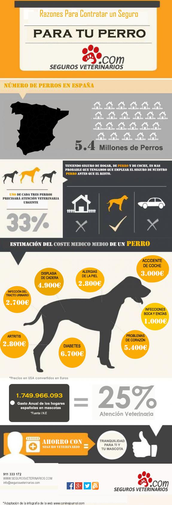 por que contratar Seguro Veterinario para Perros