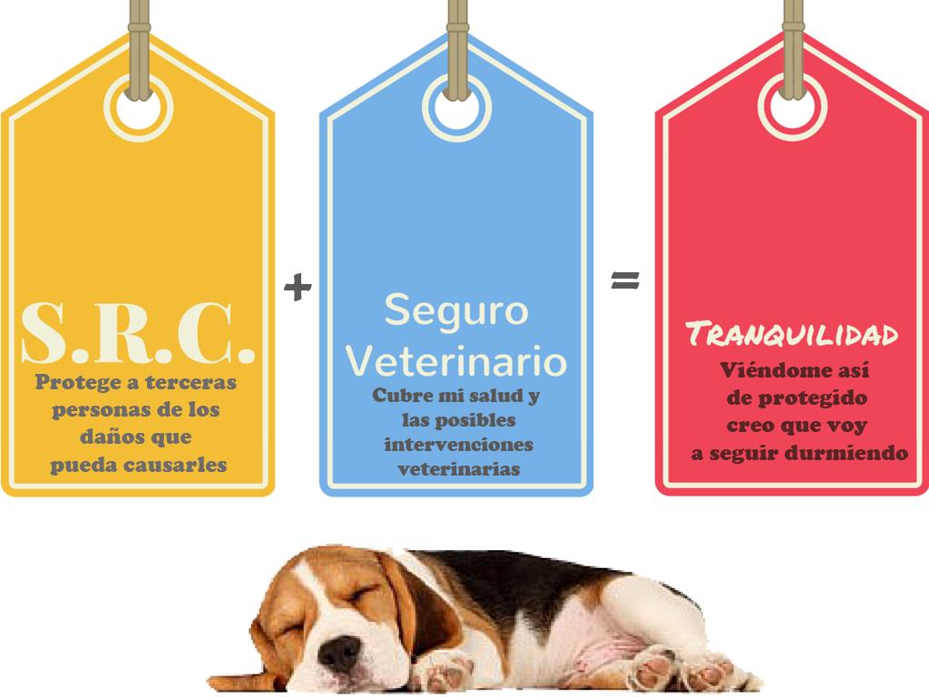 Seguros de Responsabilidad Civil para Perros y otras mascotas, Seguros Veterinarios, seguros para perros