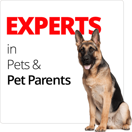 EXPERTS in Pets & Pet Parents