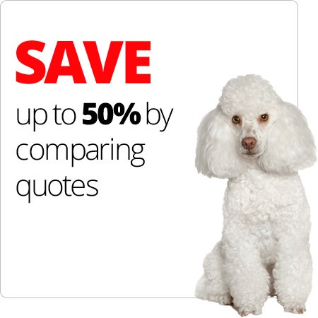 SAVE up to 50% by comparing quotes